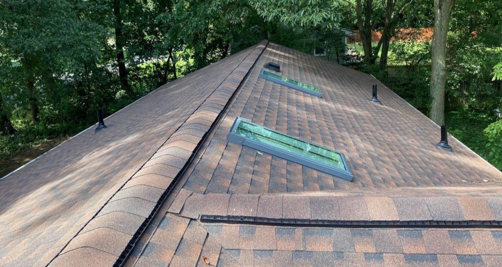 Shingle roof with skylights