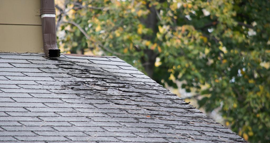 Water leak from damaged asphalt shingles on roof